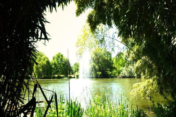 69c2e75aef0c03 Green places   nature in Mannheim